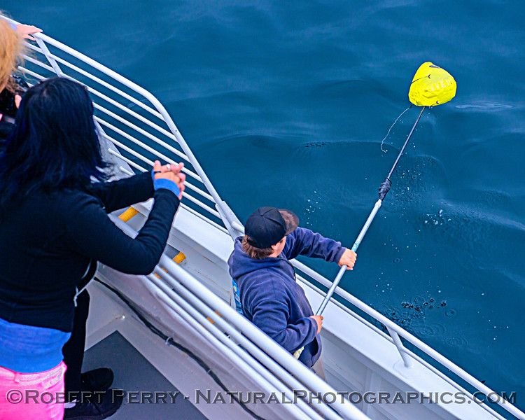 deckhand Colton retrieves Mylar balloon debris 2019 06-20 SB Channel-b-003