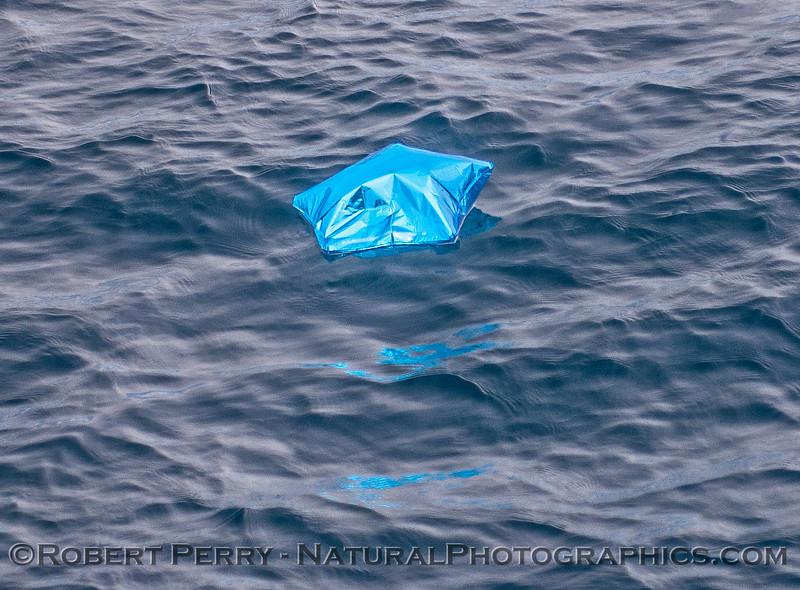 mylar star balloon retrieval Augie 2015 07-21 SB Channel-a-002