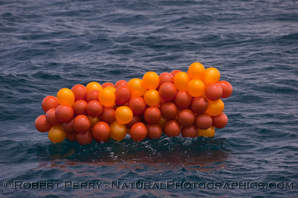 massive orange Helium balloon plastic debris 2009 06-27 SB Channel c - 188mod