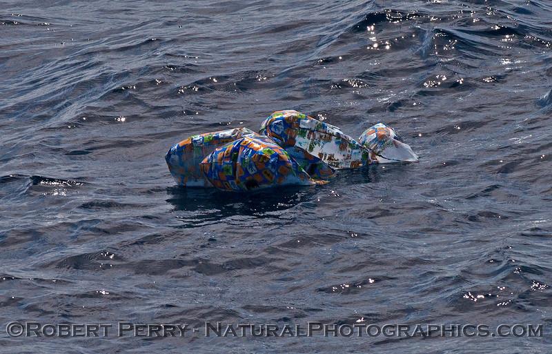 balloon debris on surface 2014 10-17 SB Channel-017