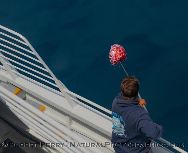 balloon Mylar deckhand Colton 2019 04-30 SB Coast-b-002