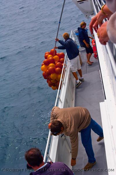 big mass of baloon debris 2009 06-27 SB Channel a - 086mod