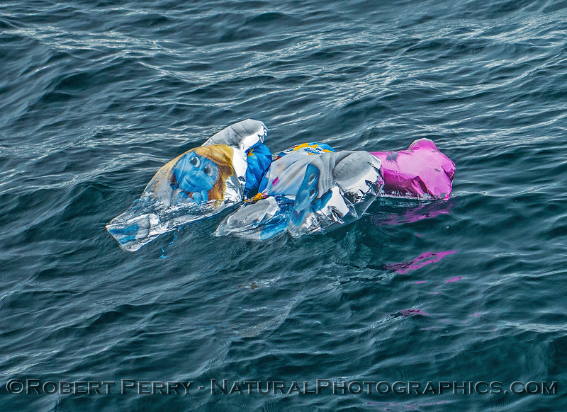 balloon debris removal 2016 12-30 SB Channel-a-008