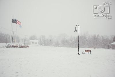 Snow - January 7, 2017 (3)