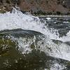 River wave-1 copy