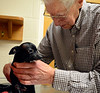 DAVID LACHANCE — BENNINGTON BANNER<br /> Veterinarian George Glanzberg administers a vaccine to Mustang.
