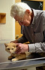 DAVID LACHANCE — BENNINGTON BANNER<br /> Veterinarian George Glanzberg examines General, whose owner was concerned because the cat had become lethargic.