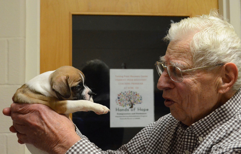 DAVID LACHANCE — BENNINGTON BANNER<br /> Veterinarian George Glanzberg gets a close look at Raja. He found that the puppy had a heart murmur, which might or might not require treatment later in the dog's life.
