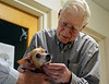DAVID LACHANCE — BENNINGTON BANNER<br /> Above: Veterinarian George Glanzberg examines a lump on the jaw of Lucky. The dog had lost a lot of weight, which worried its owner.