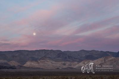 Sierra Moon