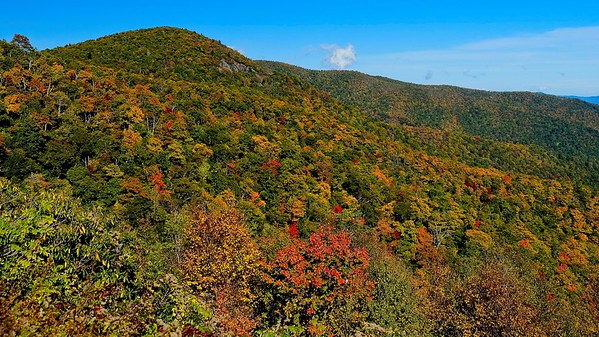 Autumn on the Blue Ridge Parkway - October 22, 2019