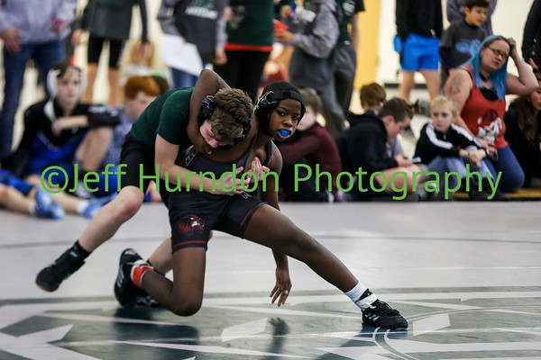 Henry Co Wrestling Area Tournament
