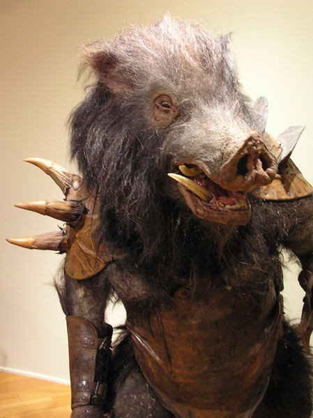 Minoboar close-up