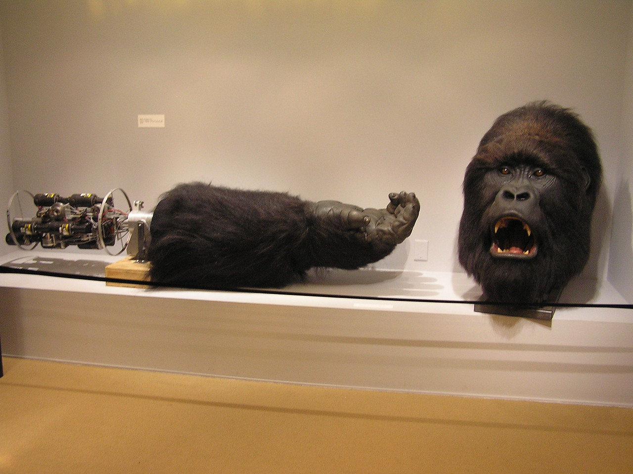 Arm and head for <i>Mighty Joe Young</i> (1998). I wish I had gotten some scale in this photo, as these are much larger than a human's arm and head.