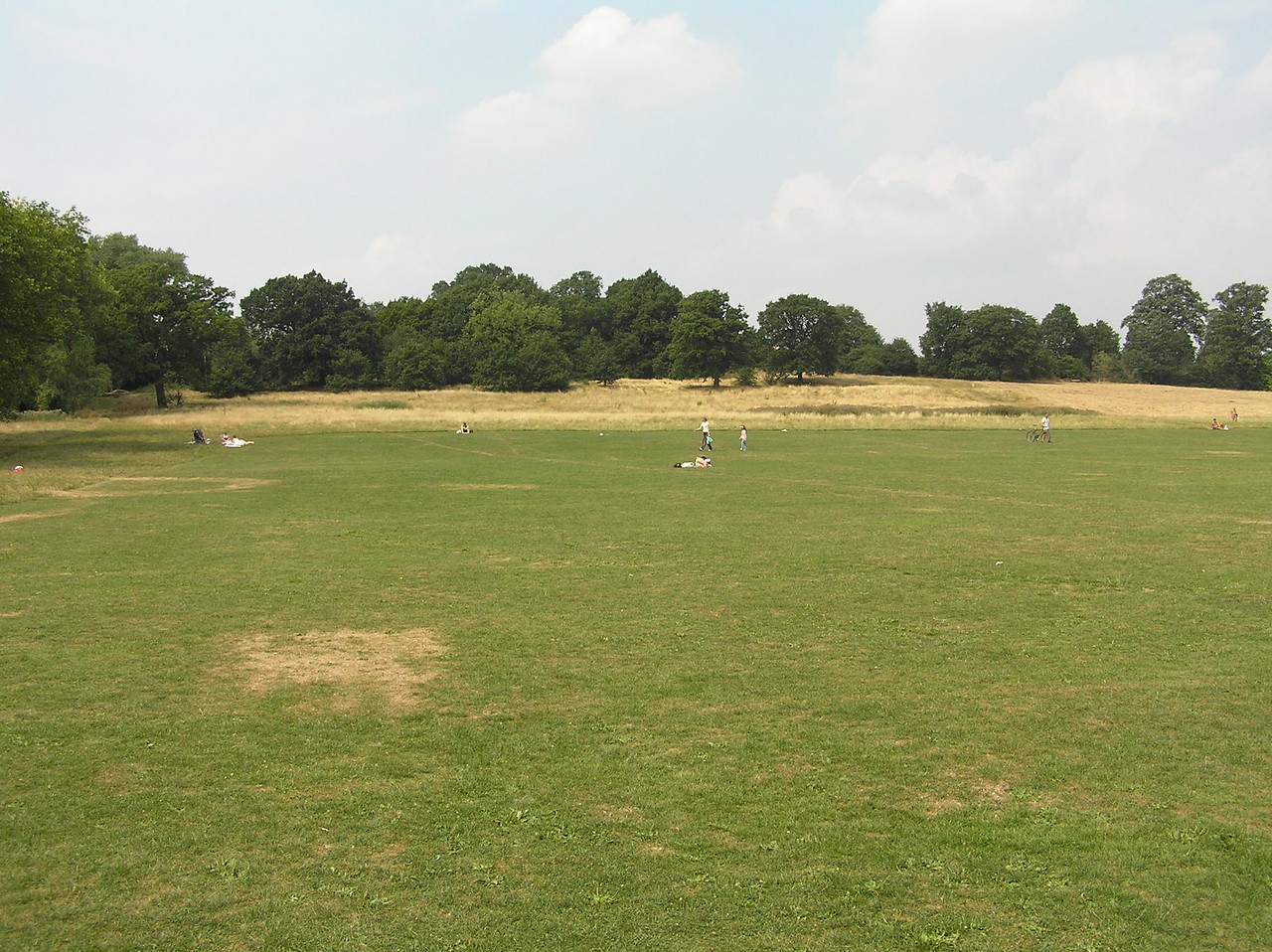 Looking north from the south side of Hampstead Heath. The Sahlin/Henson bench is just beyond the trees.