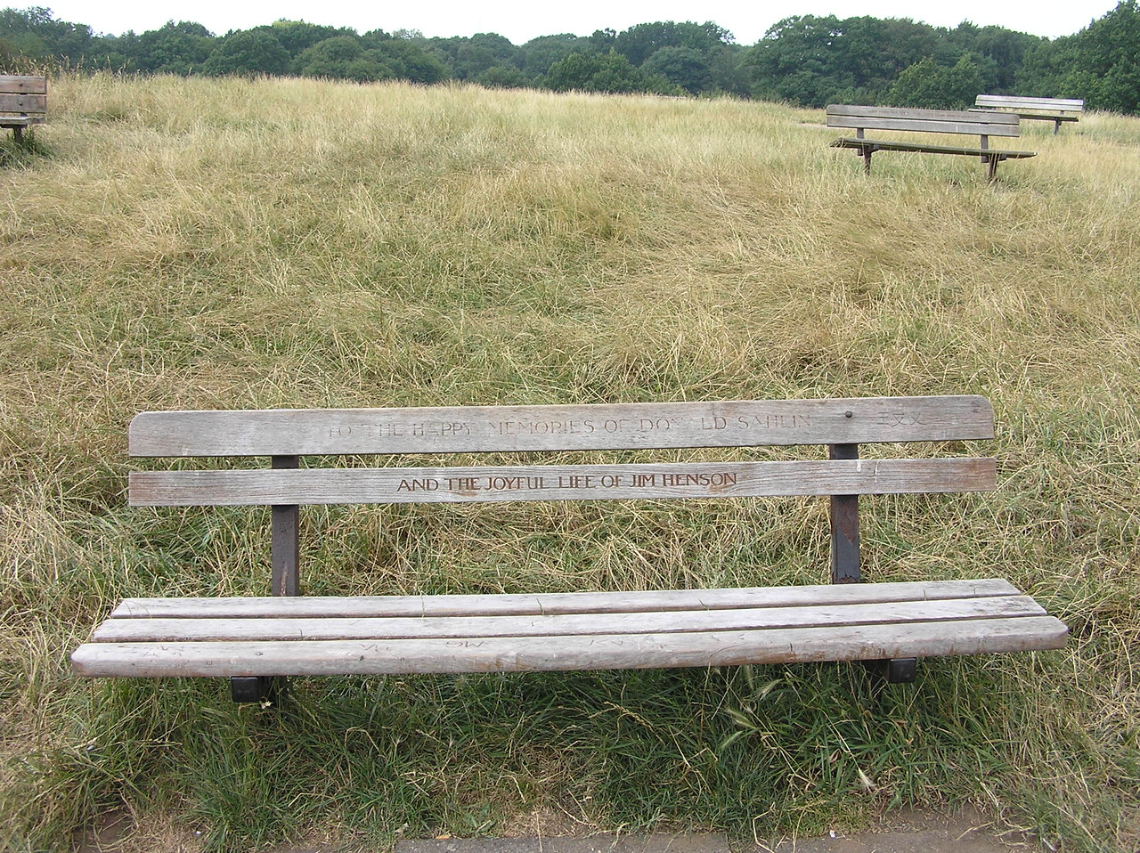 Don Sahlin started working with Jim Henson around 1962 and soon became Jim's main designer and puppet builder. When Don died in 1978, Jim had this bench inscripted in his honor, on Don's favorite spot in Hampstead Heath. The bench was also dedicated to Jim after his death in 1990.<br /> <br /> TO THE HAPPY MEMORIES OF DONALD SAHLIN<br /> AND THE JOYFUL LIFE OF JIM HENSON