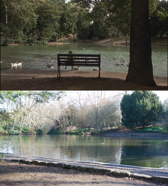 The scenes in Battersea Park start with Kermit sitting on a bench, holding a glass slipper that Miss Piggy left behind at the Dubonnet Club.<br/><br/>It turns out that I had found this pond during my 2006 trip (as shown in the earlier photos), but I wasn't able to convince myself that it was the one from the movie. Part of the problem was 20 (now 30) years of growth, but also the bench and the tree are no longer there.