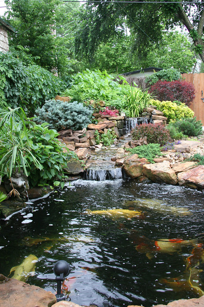 The Koi Pond completed 1997