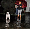 Nora and John Hickey watch their dog Dublin, 4 years old, enjoy the 20 inches of water in front of their house at 48 State Street, VS. October 11th, 2007. Photo by Kathy Leistner