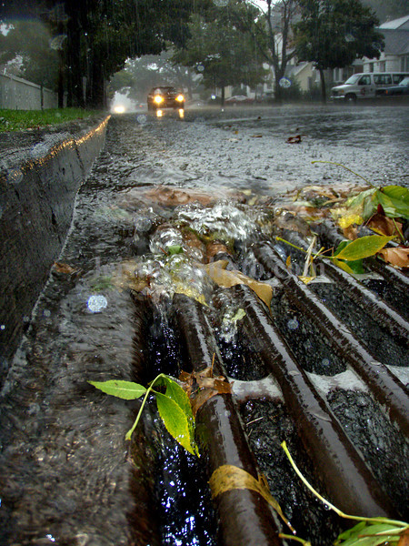 Fletcher Avenue between Hudson Ave. and Crowell Place , Thursday, Oct. 11th, Valley Stream. Photo by Kathy Leistner