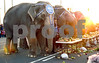 March 11th, 2008 Elephant Walk. Children's Museum. Garden City. Photo by Kathy Leistner