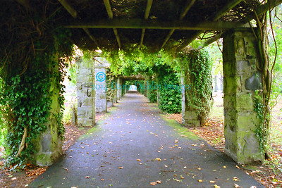 Pergola in Autumn - 2