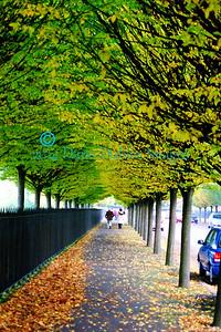 Autumn in Dublin - 2