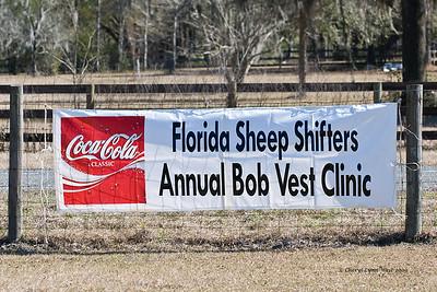Florida Sheep Shifters - Annual Bob Vest Clinic - February 2009