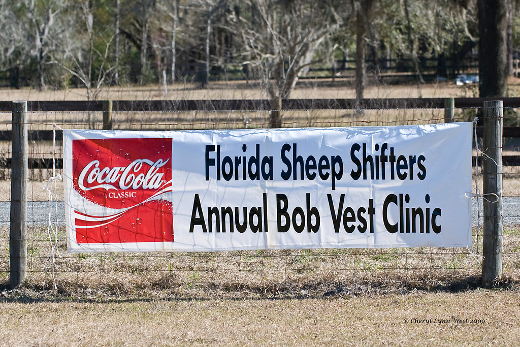 Florida Sheep Shifters - Annual Bob Vest Clinic - February 2009
