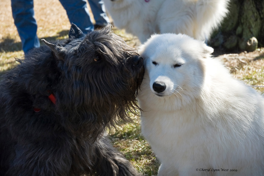 Hudson whispers sweet nothings in Joy's ear