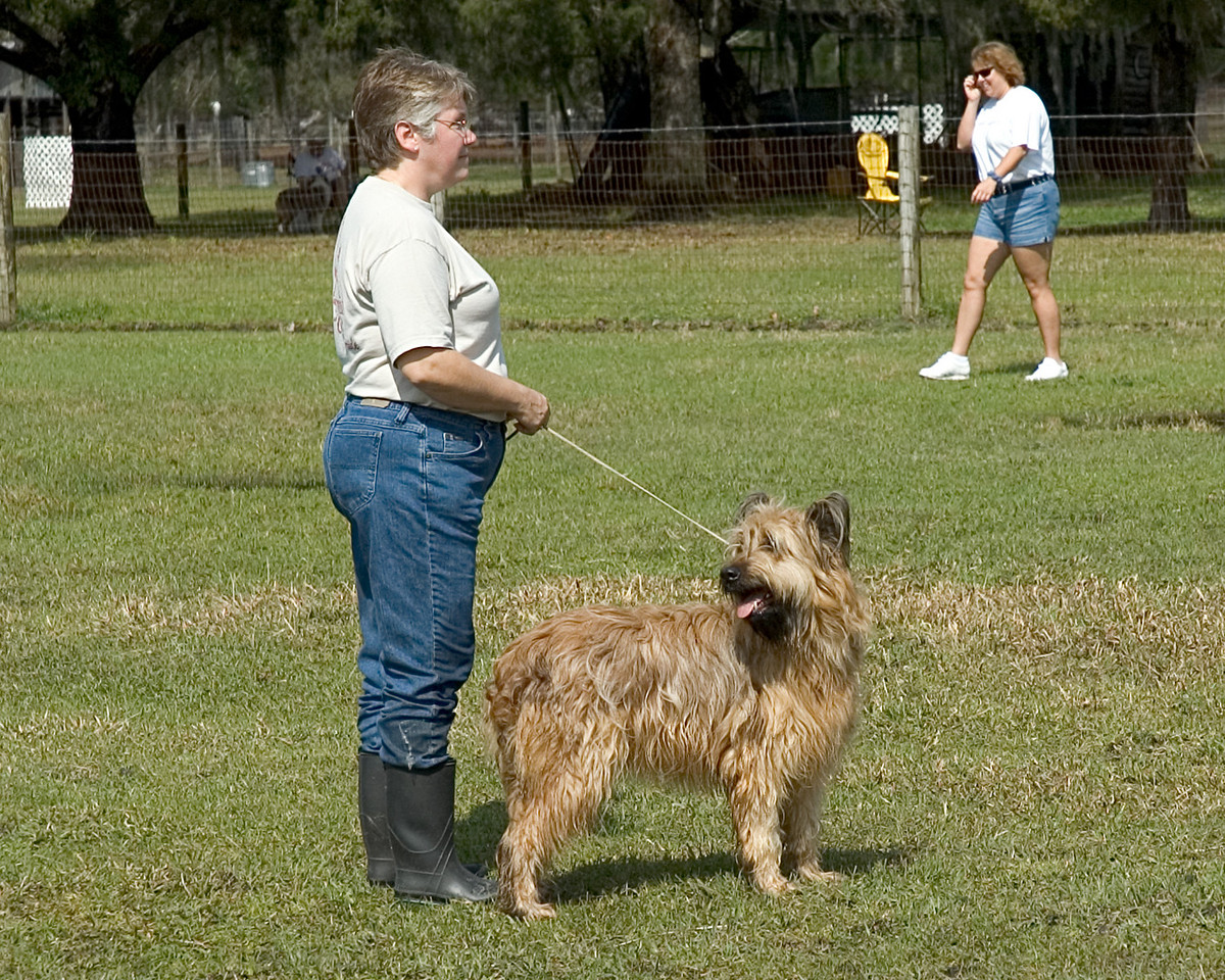 Bree, a Briard, and Michelle await their turn in the HCT ring.