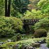 Peaceful Bridge -- 04/24/17