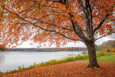 Fall at Unity Park
