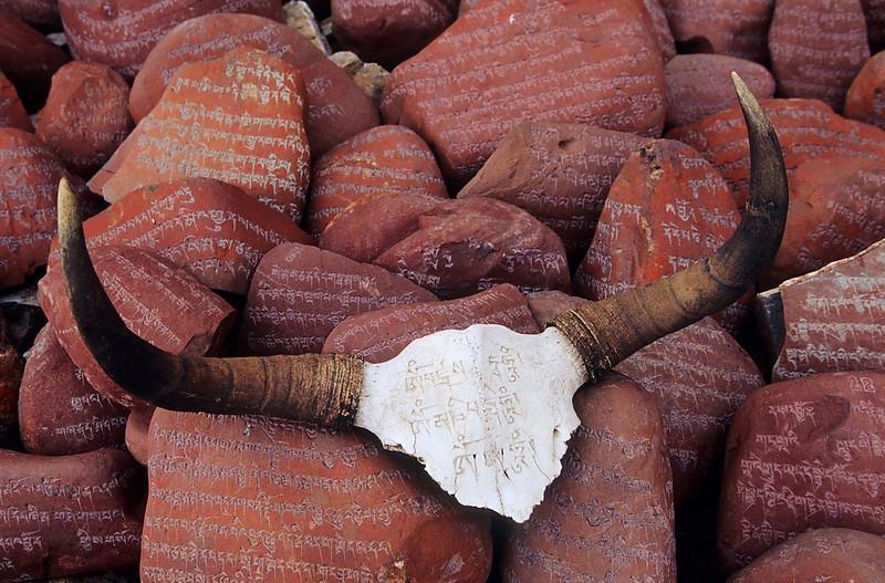Mani stones and yak horn. Nam-tso. Tibet.