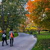 DSC_5373 fall time scene at the botanical gardens