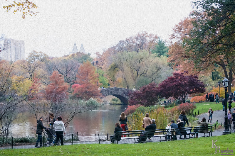 DSC_5529 Central Park , The Pond in the fall