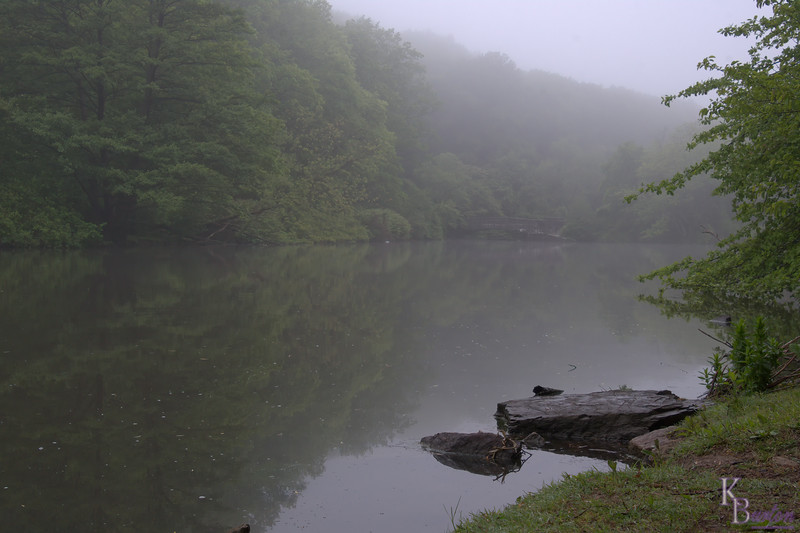 DSC_4221 fogy morning at Clove Lakes