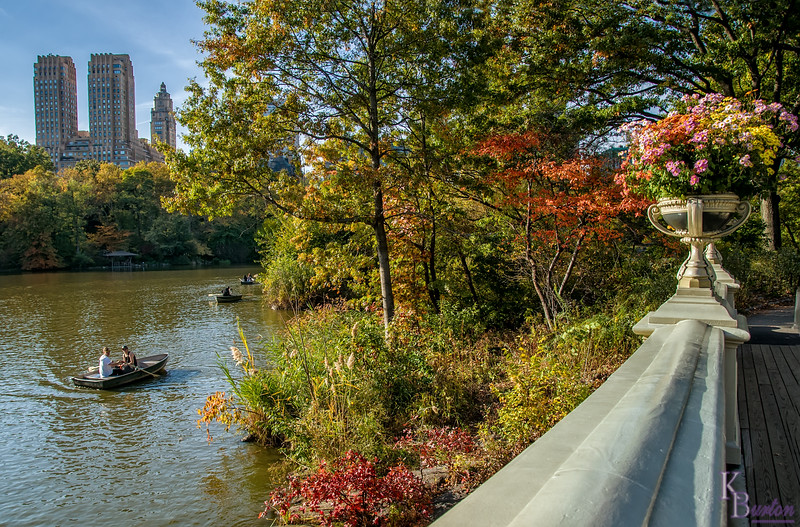 DSC_7545 fall scene's from Central Park