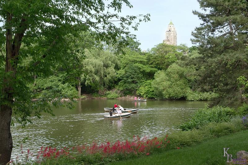 dsc_6852 summer scene at Central Park