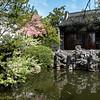 DSC_3717 Chinese gardens