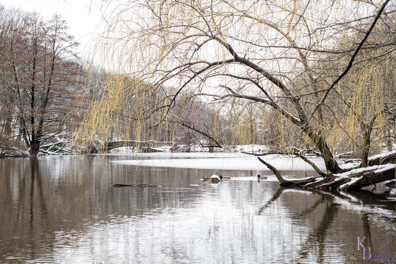 DSC_9148 wintertime at the lake
