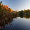 DSC_2531 Snug Harbor marsh in the fall_DxO