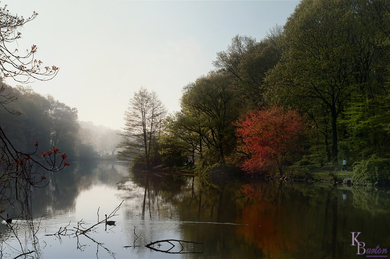 DSC_5059 foggy morning at Clove Lake