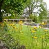 DSC_5437 Aquatic gardens
