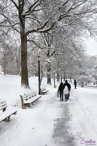 DSC_0934 snow scene at Silver Lake