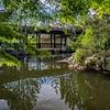 DSC_1219 Chinese Gardens