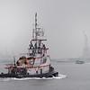 DSC_5864 the Davis Sea