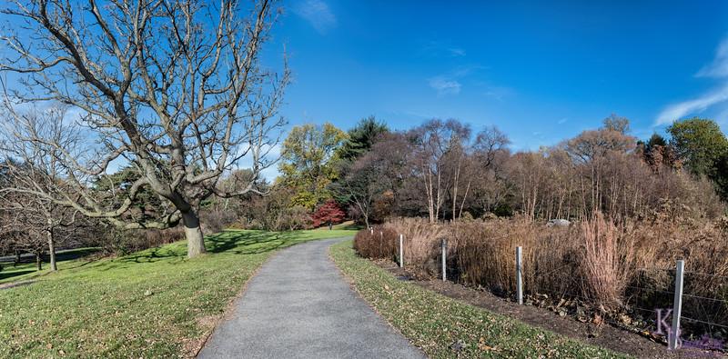DSC_7991 fall time at the Bronx botanical gardens