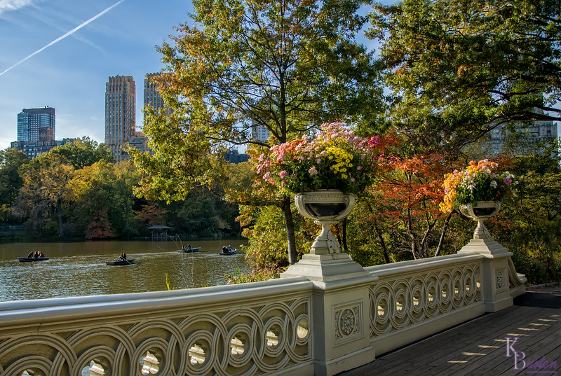 DSC_7541 fall scene's from Central Park