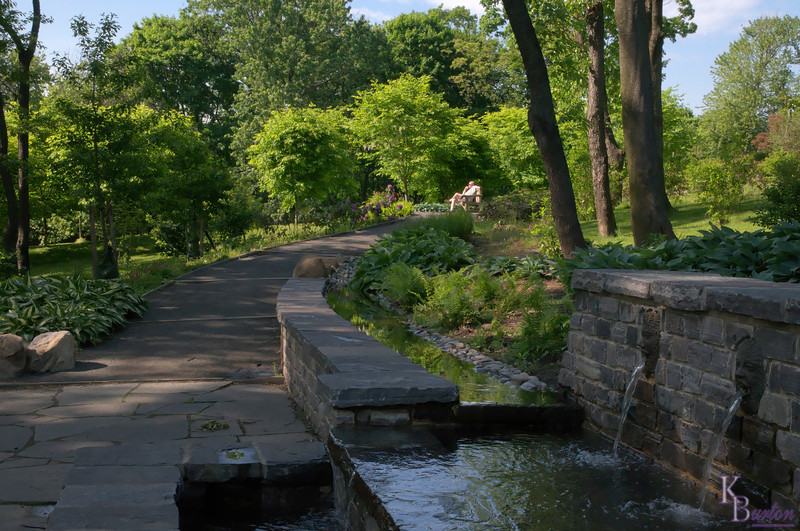 I've discovered that the winding paths that snake through the Healing Gardens here at Snug Harbor are a popular place to walk both dogs and baby carriages, and it's also a nice place to just sit and relax.